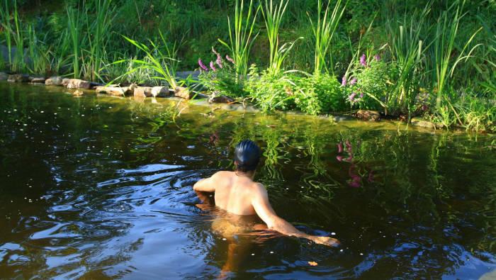 Schwimmteich mit Tief- und Flachwasserbereichen