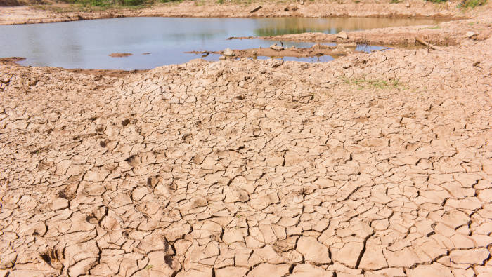 Wasser sparen ist sinnvoll - sonst droht Dürre