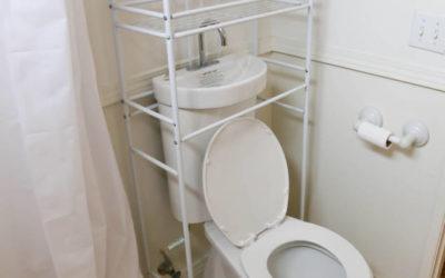 Wassersparen bei der Toilettenspülung